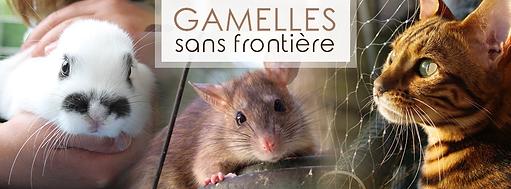 gamelles.png