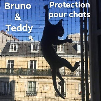 teddy et bruno.jpg