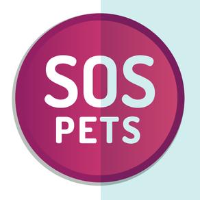Delihcat, référencée sur SOS Pets & Co