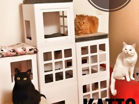 La maison 2.0 de mes loulous (ou comment ils ont été pourris par le Chat Noël)