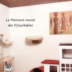 🐾 L'instant F(o)urbaby de... Tirou : le parcours mural 🐾