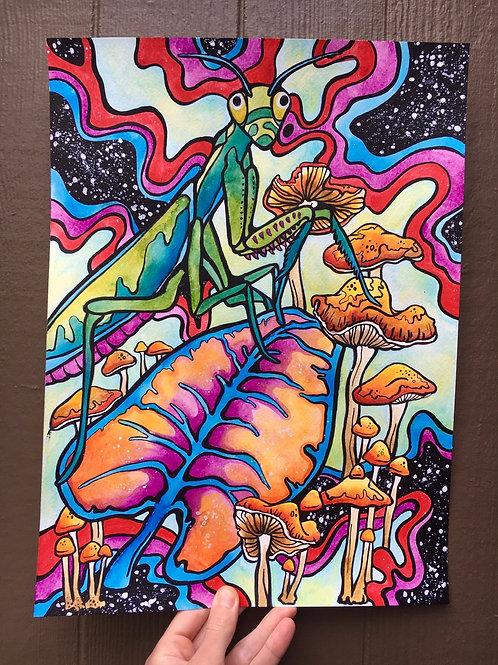 Trippy Mantis