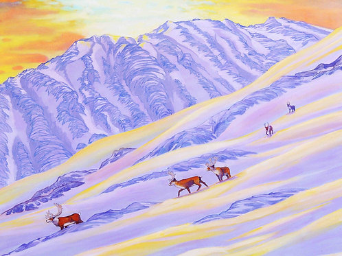 The Mountaineers (Caribou)