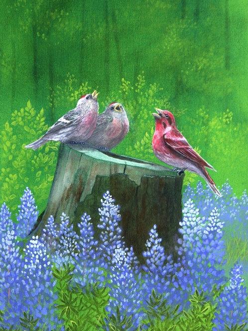 Singin' in the Rain (Purple Finch and Common Redpolls)