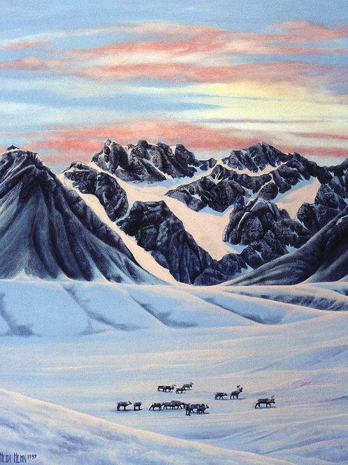 Nomads (Caribou)