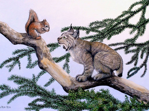 Age of Innocence (Lynx Kit and Red Squirrell)