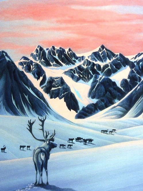 Northern Nomad (Caribou)