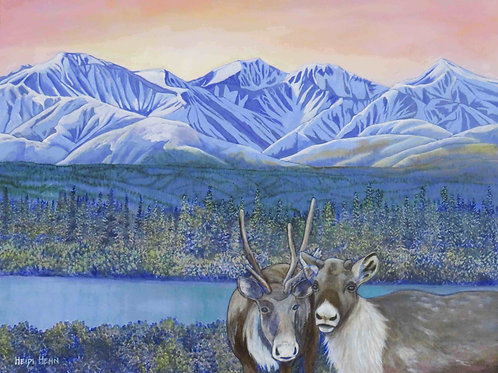 Caribou Country