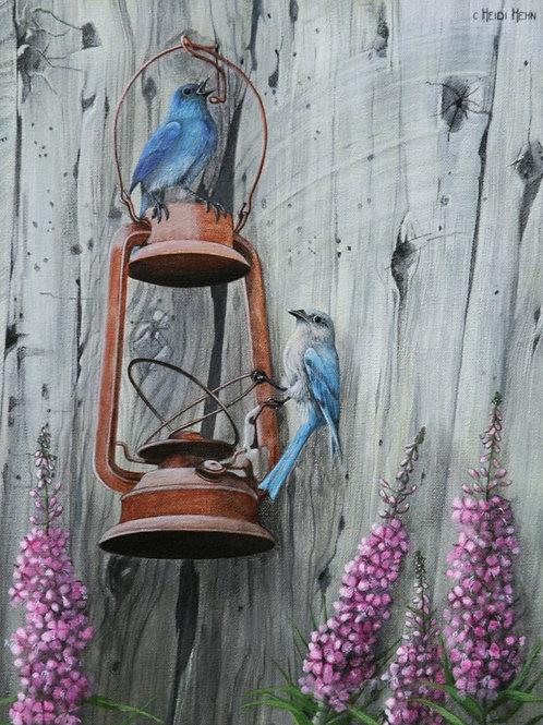 Barn Blues (Mountain Blue Birds) (Hootalinqua Blues)