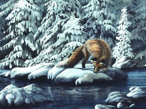 Somethin' Fishy (Red Fox)