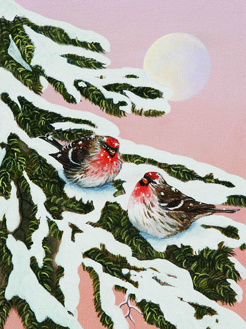 First Snow (Common Redpolls)