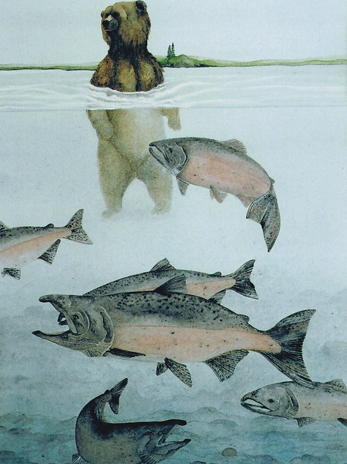 River Kings (Grizzly and Chinook Salmon)