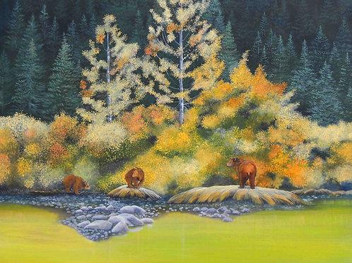 Chilkoot Bears (Grizzlies)