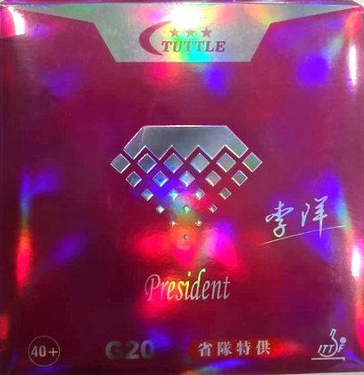 TUTTLE Président G 20
