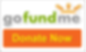 gofundme-donate-button.png
