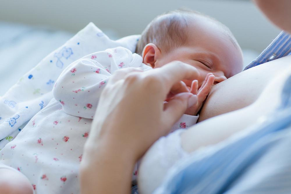 bebê recém nascido no berço da maternidade