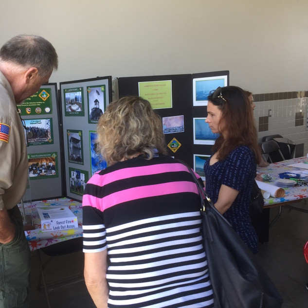 Forest Fire Lookout Display