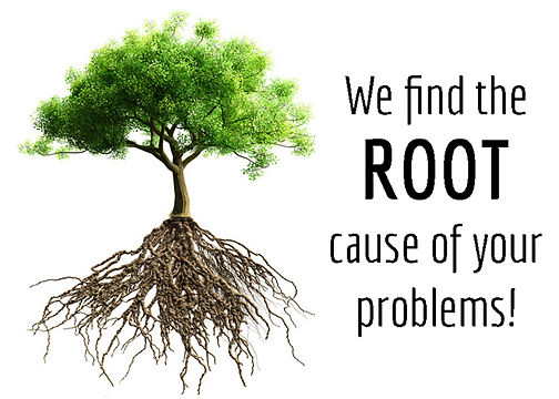 Using Wellness and Chiropractic to find the root cause of your condition