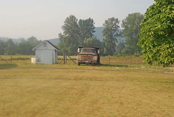 Jasper Sprinfs Farm inthe summer, selling graass-fed beef
