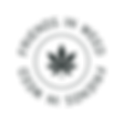 FIW-Logo-01.png