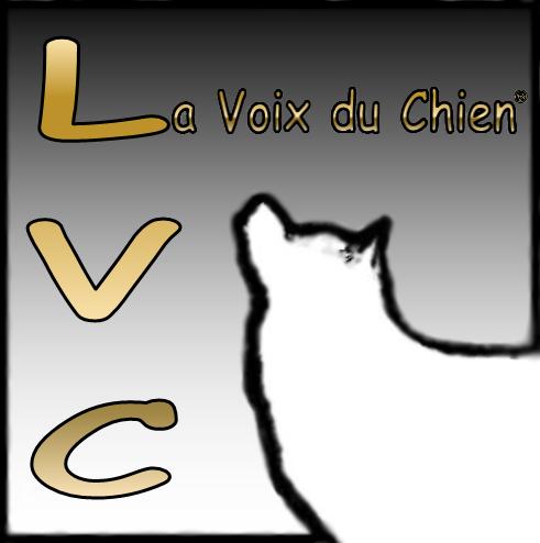 (c) Lavoixduchien.com