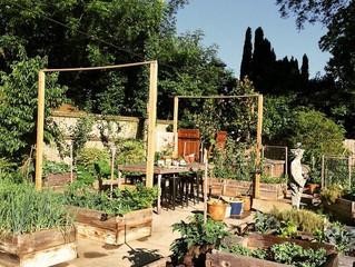 Feed the Garden