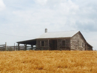 More Farm Tours!