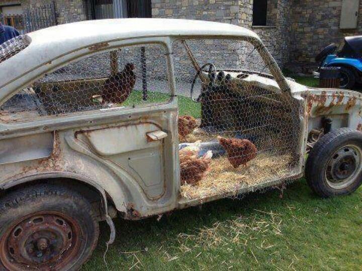 car-coop.jpg