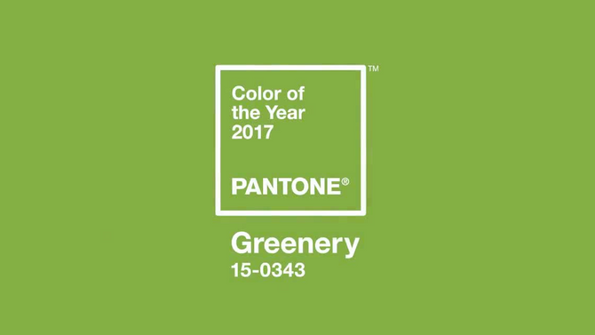 Color trend for 2017: A happy shade of green