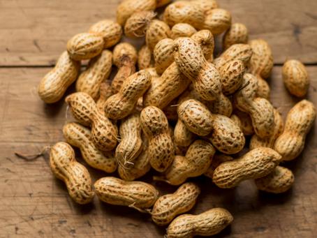 Óleo essencial de Amendoim, você conhece?