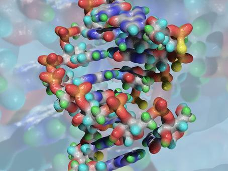 Atividade estrogênica em moléculas de óleos essenciais?
