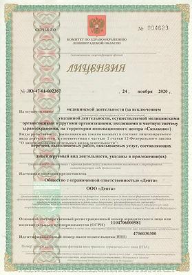 Лицензия 11.jpg