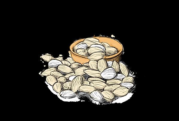 digital product illustration of alamonds