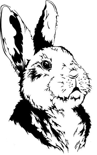 digital Illustration of a rabbit by LilyaBie