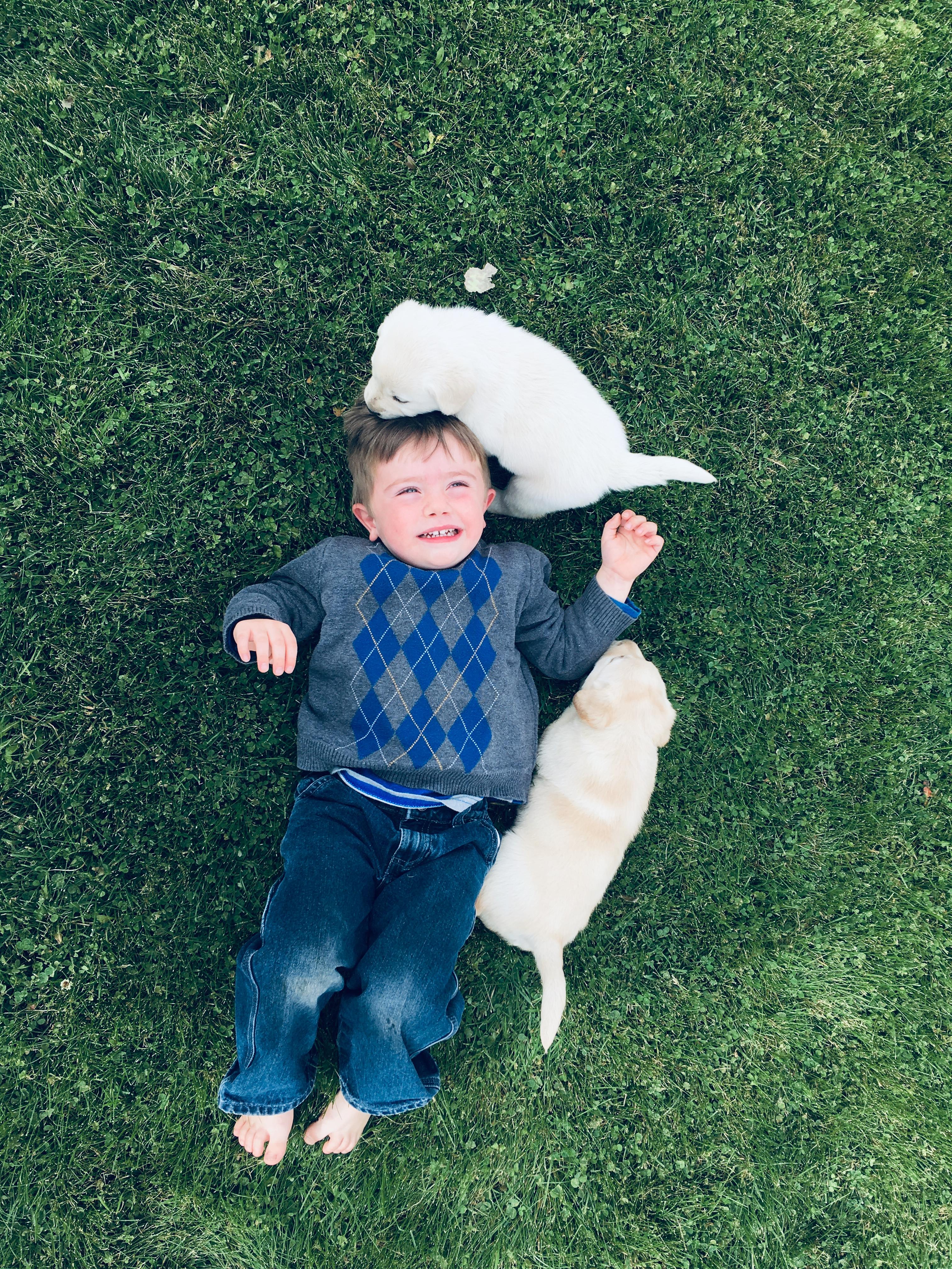 A child's joy!
