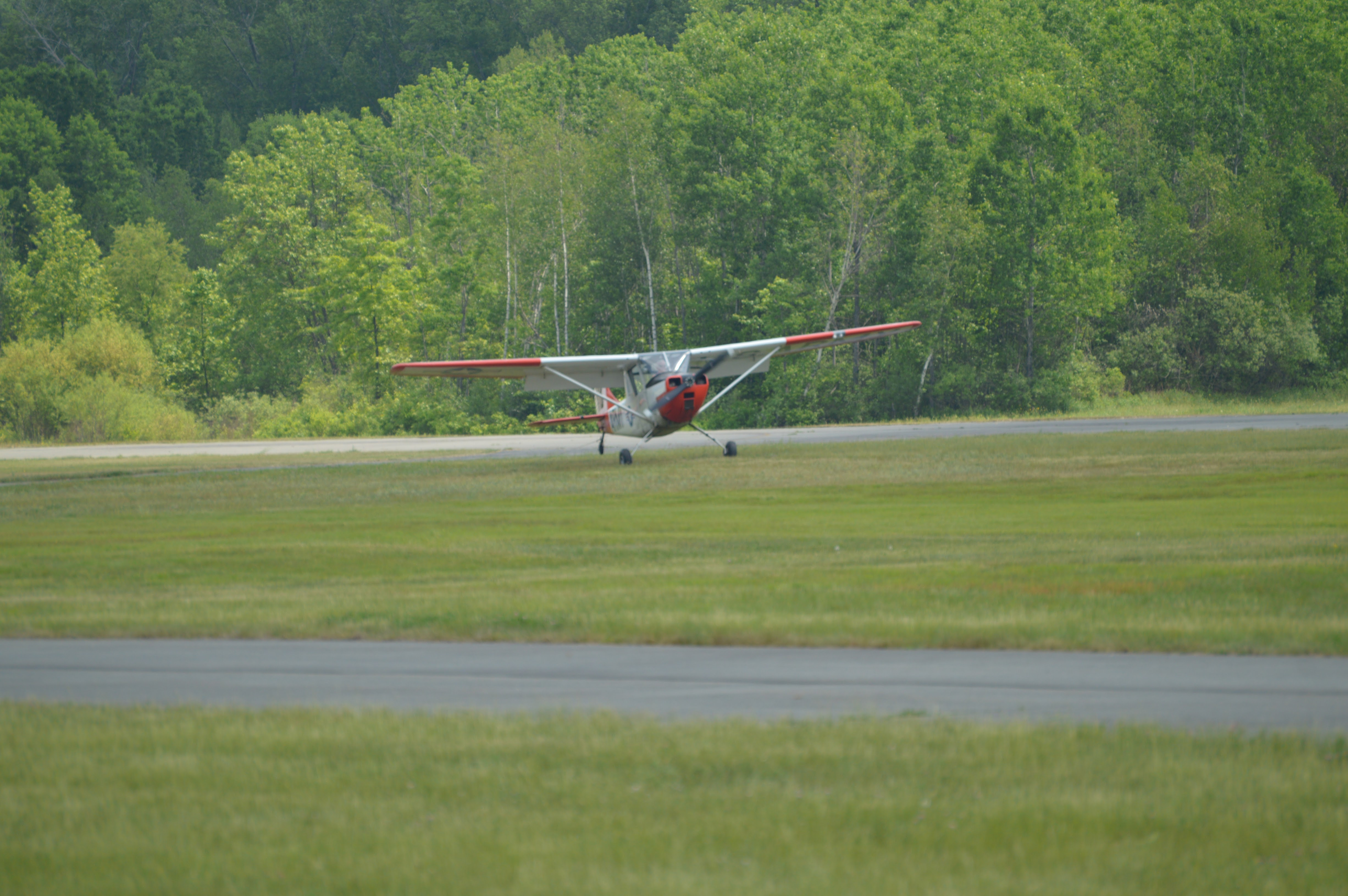 Plane spotting: Cessna Bird Dog