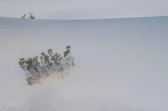 Death Valley Dawn