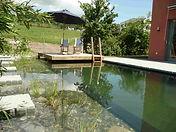 Gartenbau, Schwimmteich