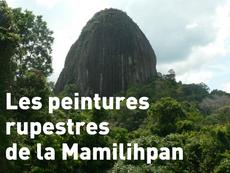 Film en compétition : Les peintures rupestres de la Mamilihpan