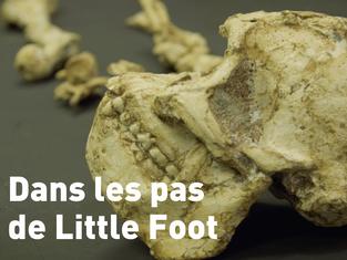Film en compétition : Dans les pas de Little Foot