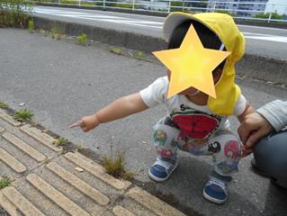 お散歩楽しいな(^^)