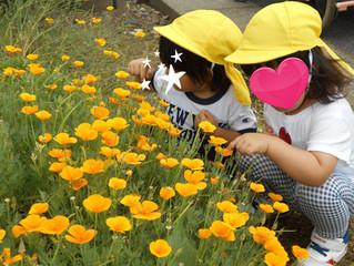 クレッシェRio;花の香りを楽しんで!