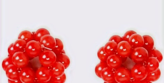 Red Coral Earring Tops
