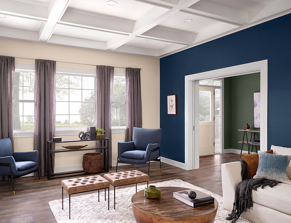 Modern Living Room with Sherwin Williams Paint