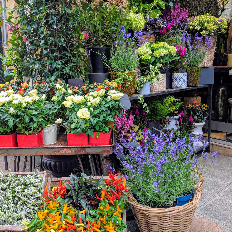 Paris Flower Store