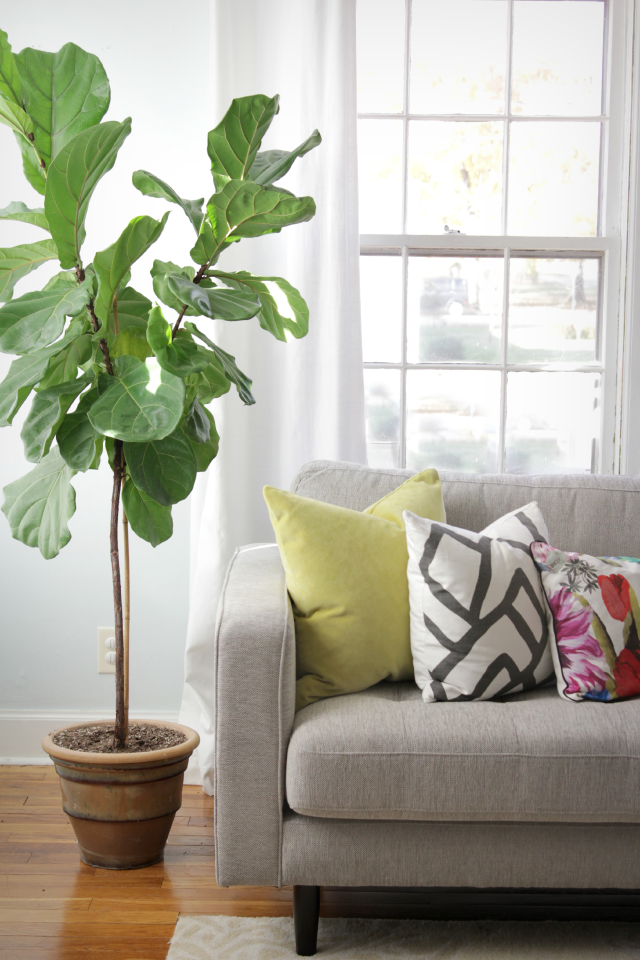 Throw Pillow Styling