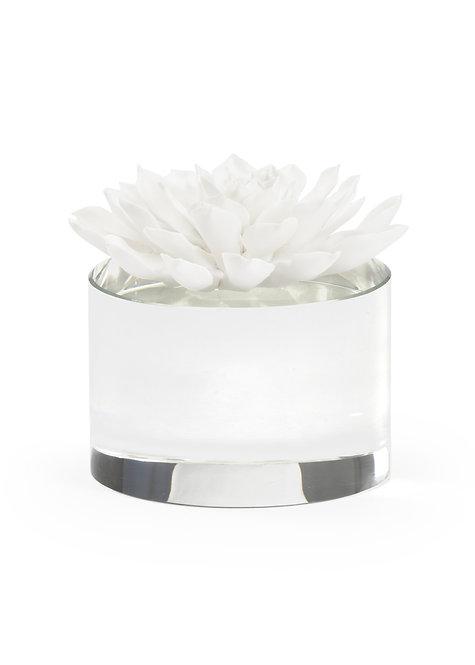 Porcelain & Crystal Succulent Sculpture