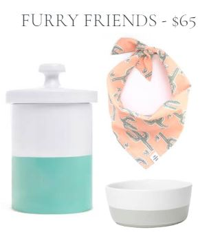Dog Accessory Gift Set with mint green treat jar and dish and coral cactus print bandana