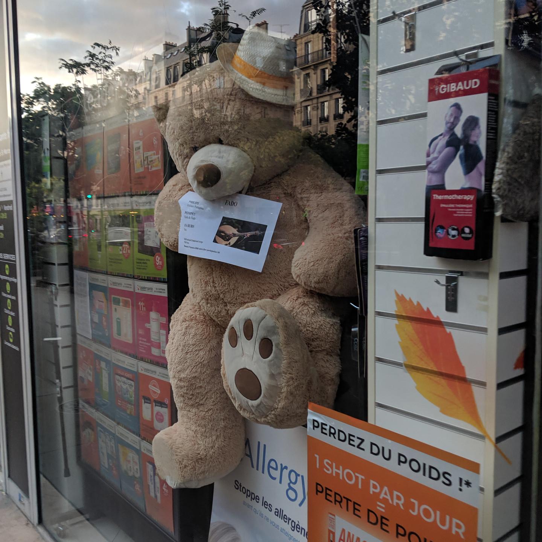 Paris Teddy Bear In Store Window