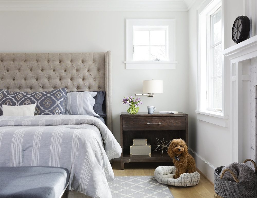 Dog Friendly Master Bedroom Design